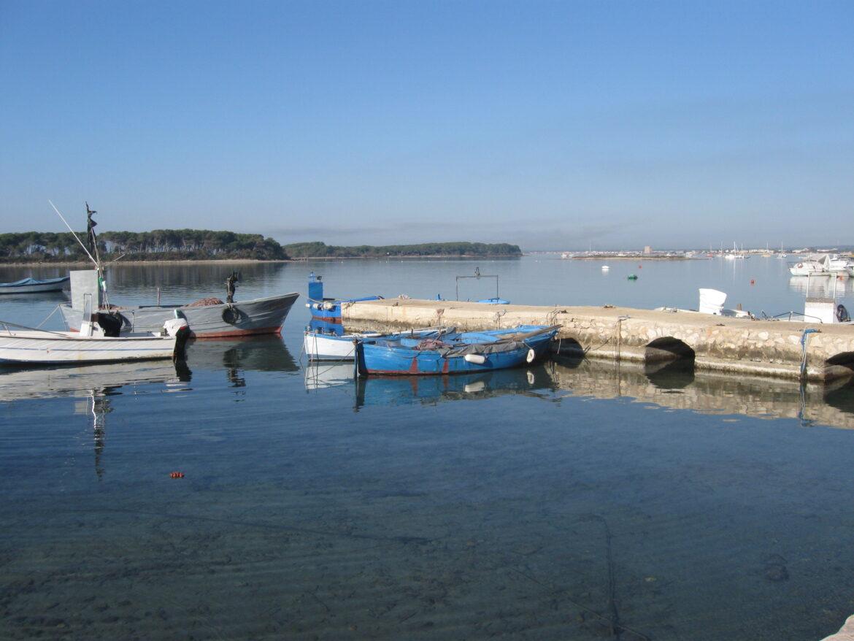 Porto Cesareo, la rete fognaria (ancora) mancante e l'attesa dell'udienza di merito sullo scarico al suolo