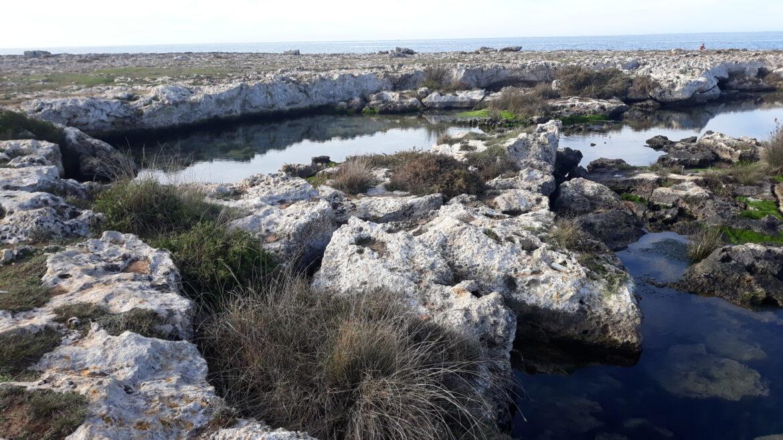 Riqualificazione del Frascone, della Palude del Capitano e di Sant'Isidoro: il progetto del Comune di Nardò