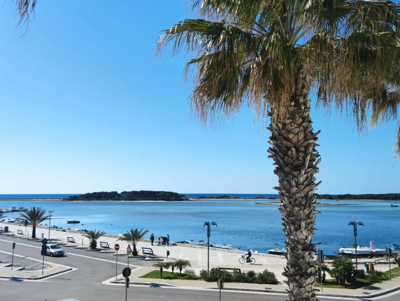 Azzurrità ioniche a Porto Cesareo